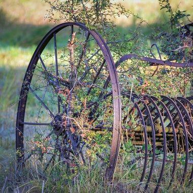 old harvest equipment, France