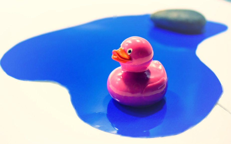 Pink Duckie In The Blue Pond
