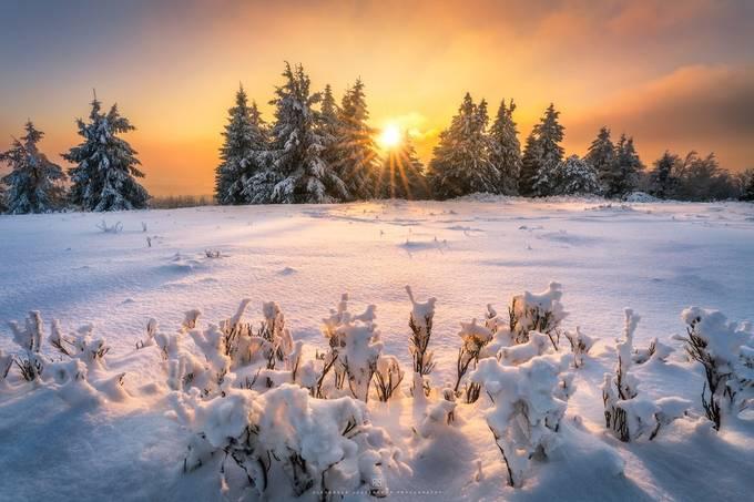 winter wonderland by alex_lauterbach - Game Of Flares Photo Contest
