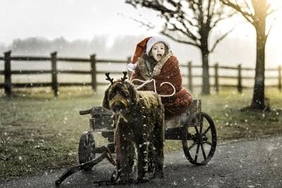 A Winter's Ride