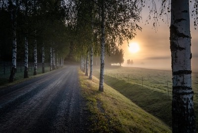 Idyllic sunrise landscape with road and fog at beautiful autumn morning in Finland