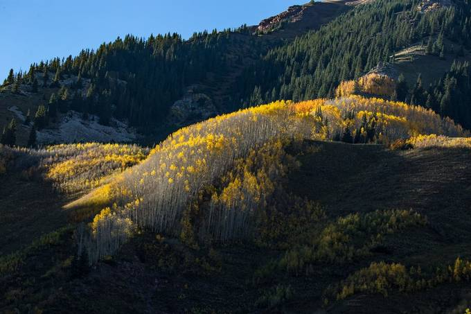 This was one of the first pictures I took when visiting the maroon bells with my new Tamron telephoto lens. I rushed to get the lens on the camera cause as seconds passed it got darker and darker so I am glad I was still able to get such an incredible shot with the shot amount of time that I had.