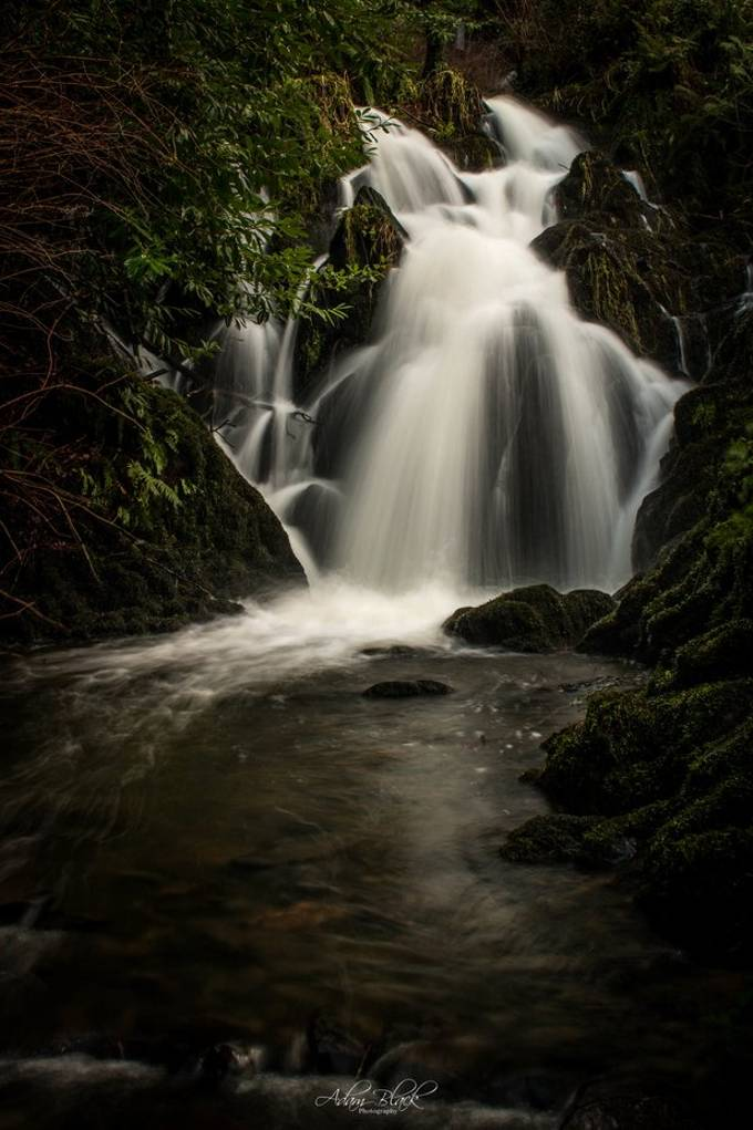 Crawfordsburn bottom waterfall