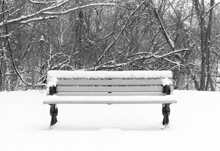 This fresh snow made this bench look like it wad just waiting for some people in love to come and...