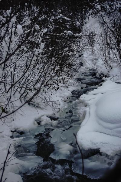 Winter Steams