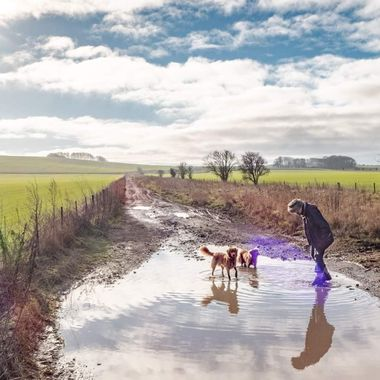 Enjoying a muddy puddle near Oliver's Castle.