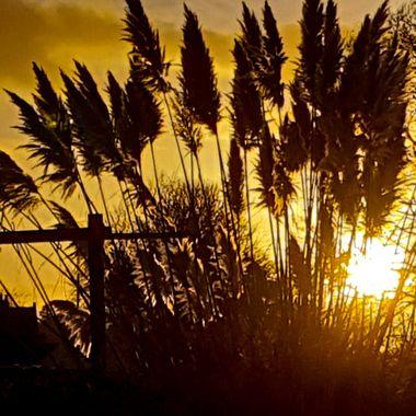 one December sunset in Nairn 2018.