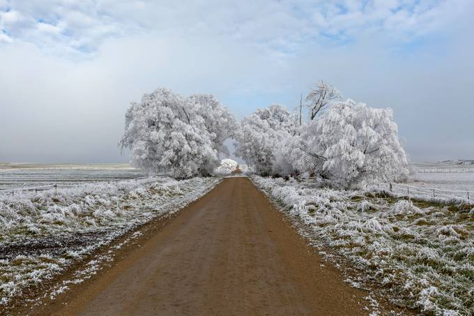 Winter Road by rexeade - Straight Roads Photo Contest
