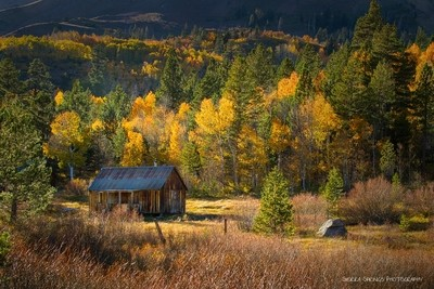 Autumn vacation Home