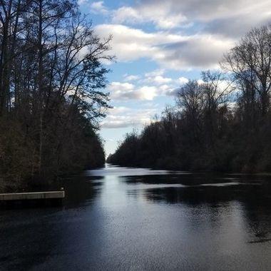 The dismal swamp