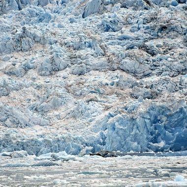 Tracy Arm Fjord (3) , Alaska