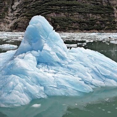 Tracy Arm Fjord (4), Alaska