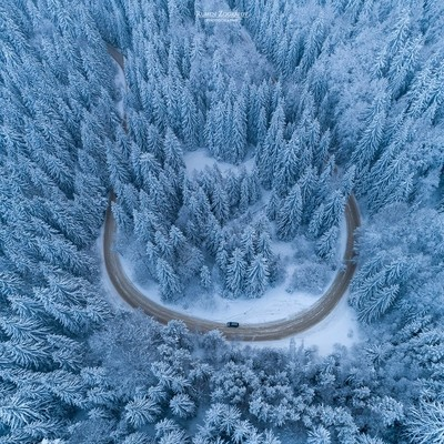 Winter curves