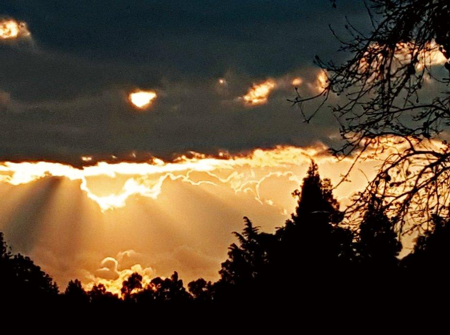 September Sunrise in Carmichael Cal.