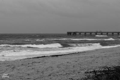 DSC_2020 B&W ~ Juno Beach Pier