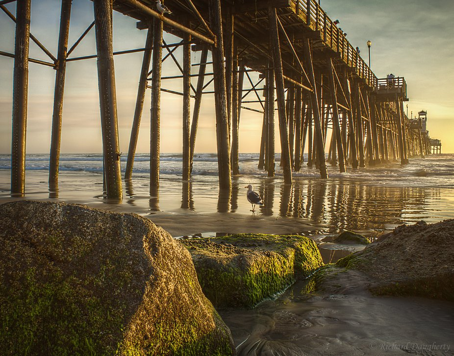We know that the gorgeous Oceanside pier is certainly massive in comparison. But when you, the vi...