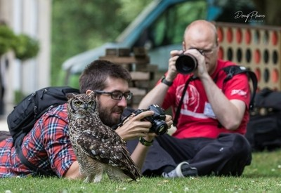Chimping with an owl