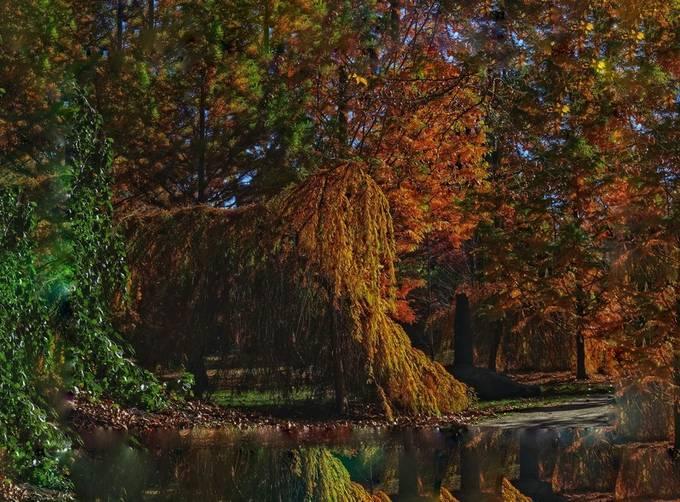 Fall in Bensalem on the Delaware