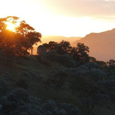 Puesta de sol por la zona de Andujar (Jaen-Spain) en busca del Lince Iberico