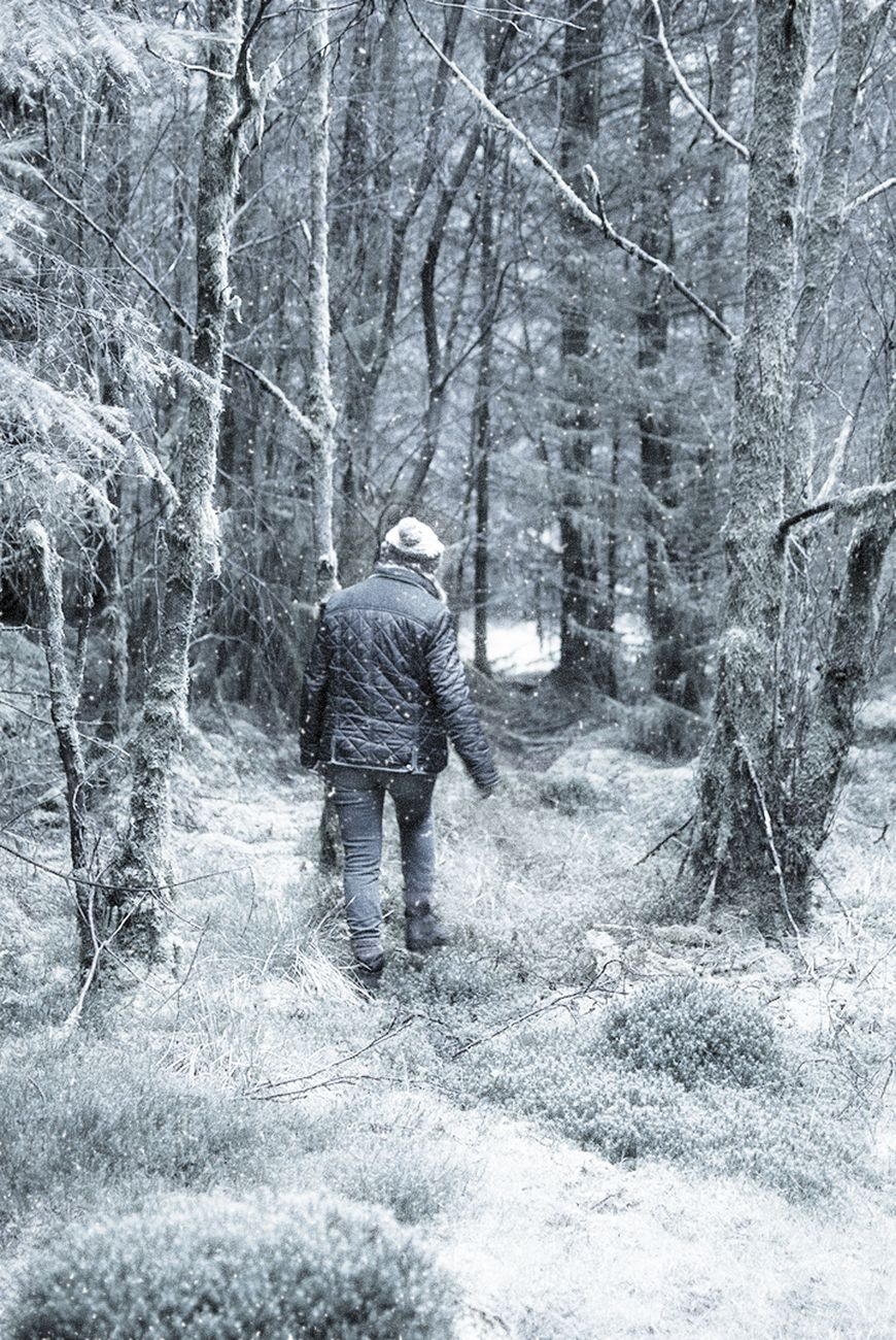 A Walk in the White Forest
