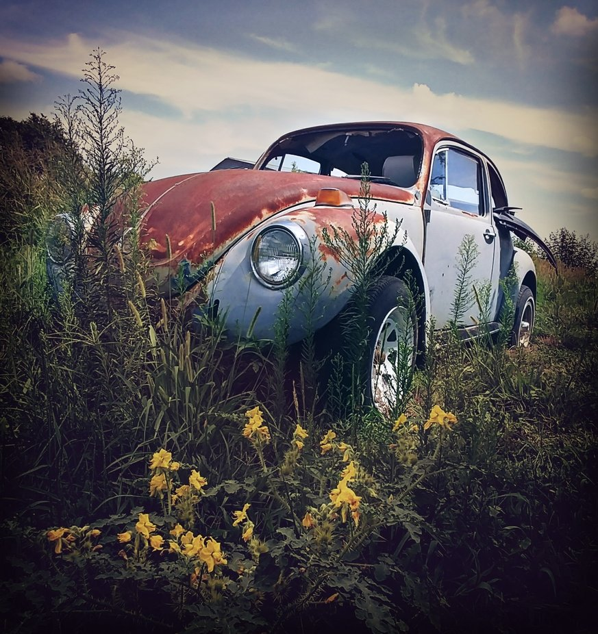 The Old  Bug 2 by chelseyvanatta - We Love Cars Photo Contest