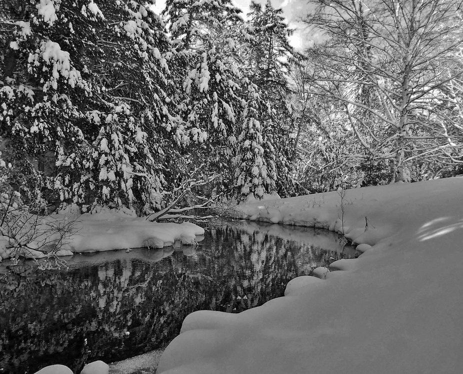 Winter leads me to black and white so many times.