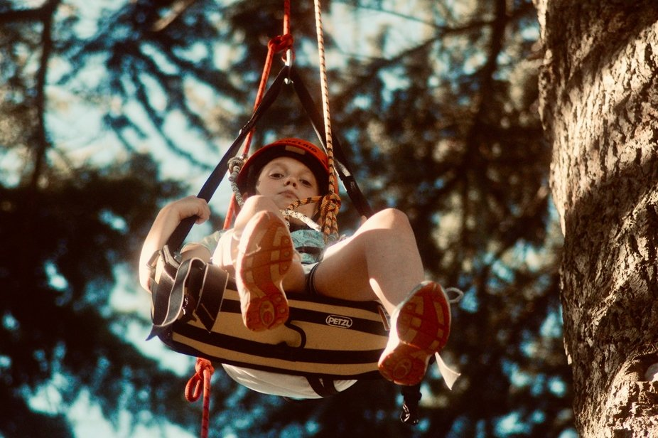 George in suspended animation at westonbirt arboretum.