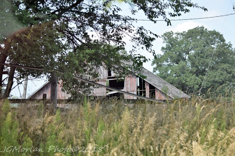 Barn on old farm site.  House long  gone.  Barn in ruins.