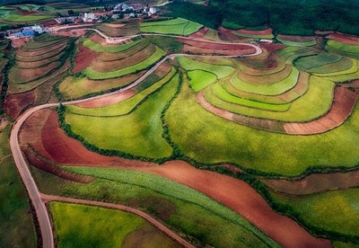Red Soil Terraces Of Yunnan China