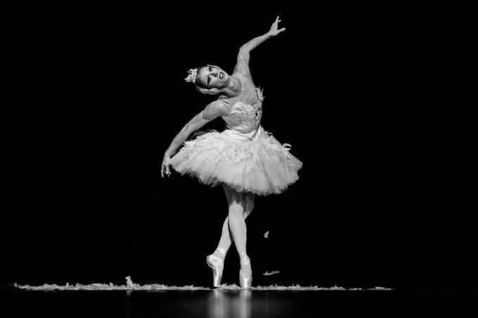 Les Ballets Trockadero de Monte Carlo, Gala des étoiles Luxembourg 2018