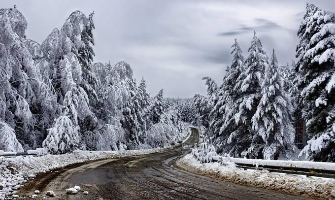 Winter road by bkrustev - Winter Roads Photo Contest