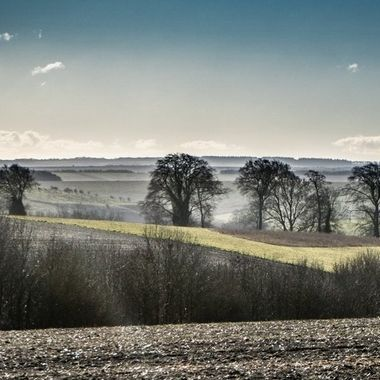 View near Salisbury Plain.