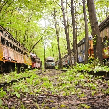 Abandoned Trolley grave yard