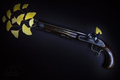 Guns and Ginkos