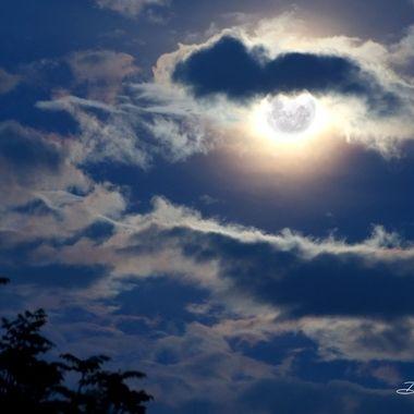 Full Moon Delights