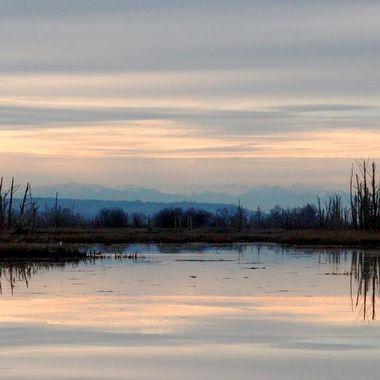 Skagit wildlife preserve
