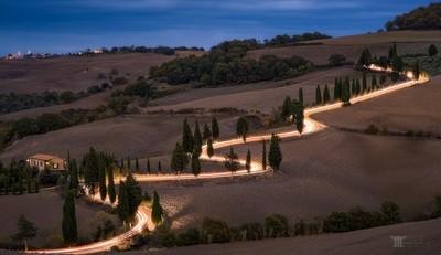Glowing cypress road