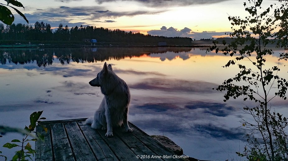 Guardian of the Lake on the pier
