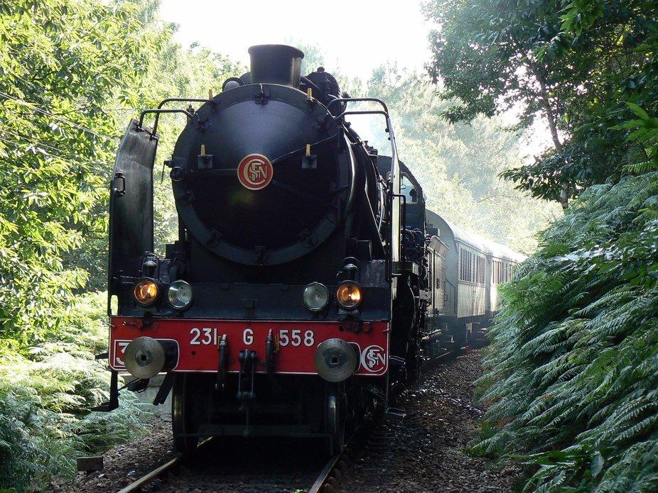 La locomotive à vapeur sur le réseau breton de la Vapeur du Trieux en 2006