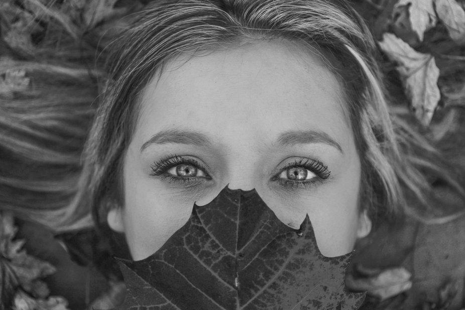 The Eyes of Autumn