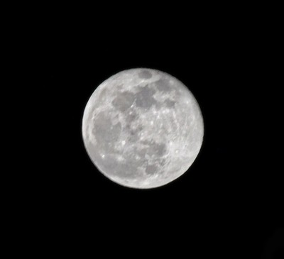 Took this picture about 3mins ago with a 300mm lens im surprised how well this came out