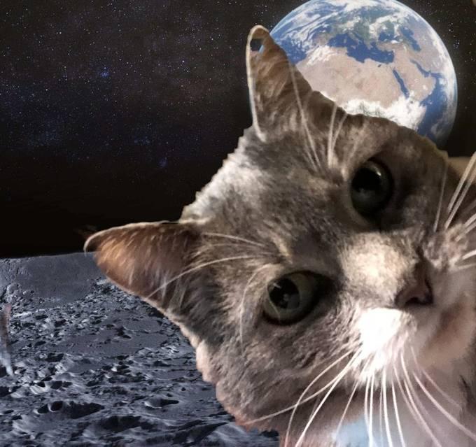 My Libby the astronaut