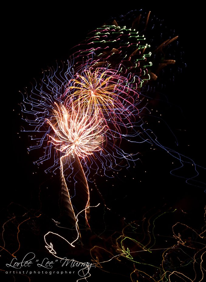 Fourth of July Fireworks display