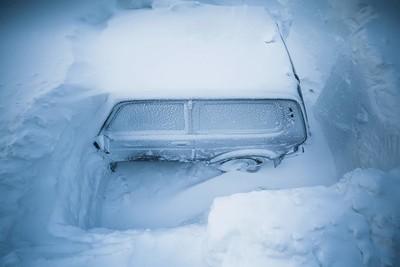 Russian snowdrop