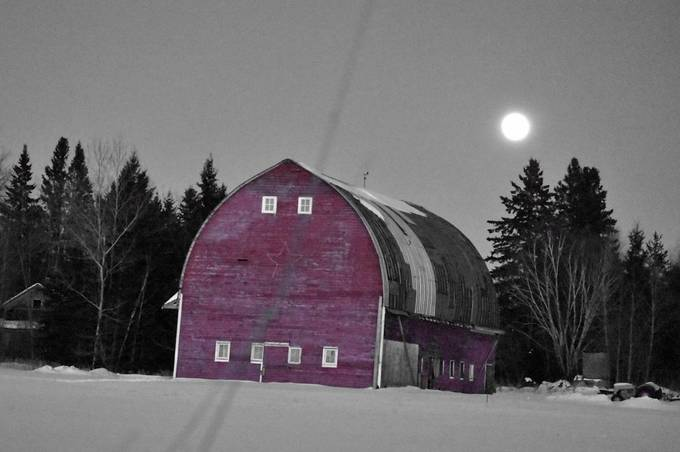 Taken with selective color  black & White Nikon D3400