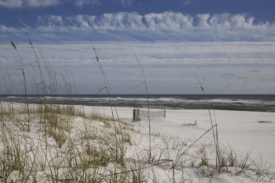 This was taken along the Navarre Parkway in the National Park.