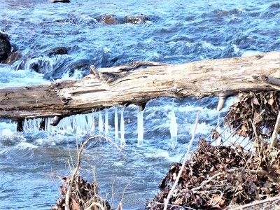 Cold Blue Mountain Stream
