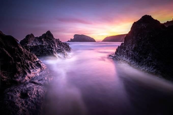 Pure Joy by Bren_Ruiz - Monthly Pro Photo Contest Vol 48
