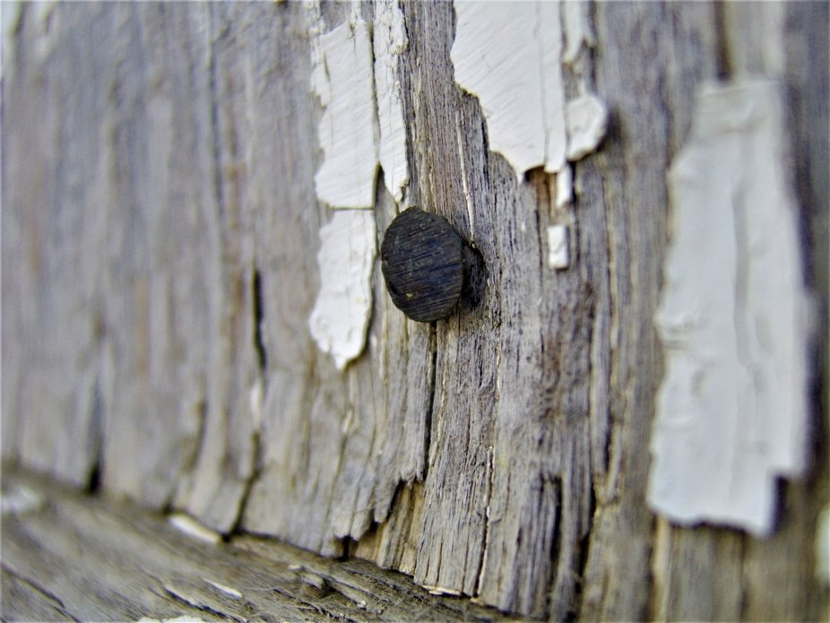 Rusted nail in the wall of an ageing garage, with peeling paint