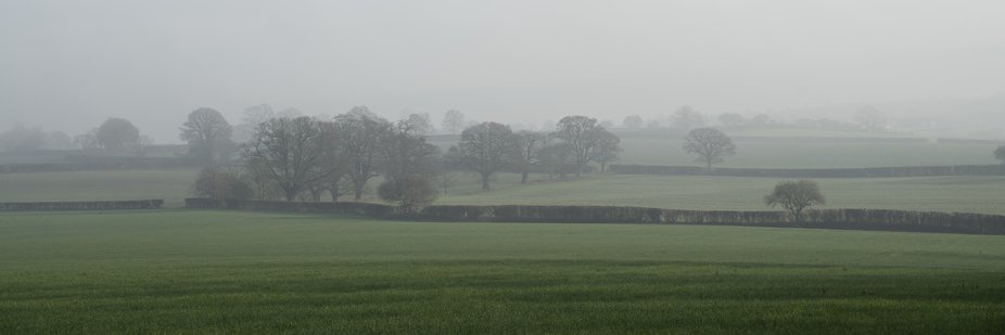 A misty morning walk in my local village of Risbury, rewards me with views across the fields.